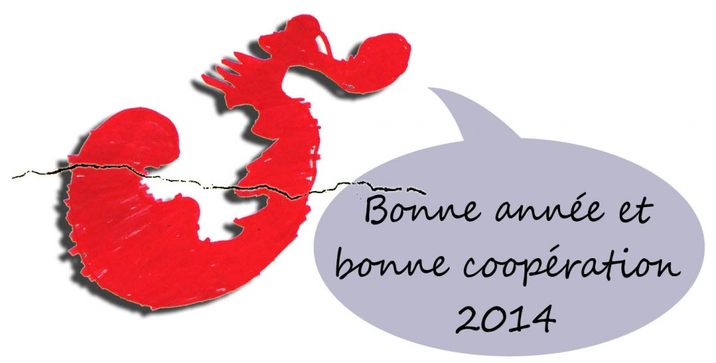Bonne année 2014 sans carte copie